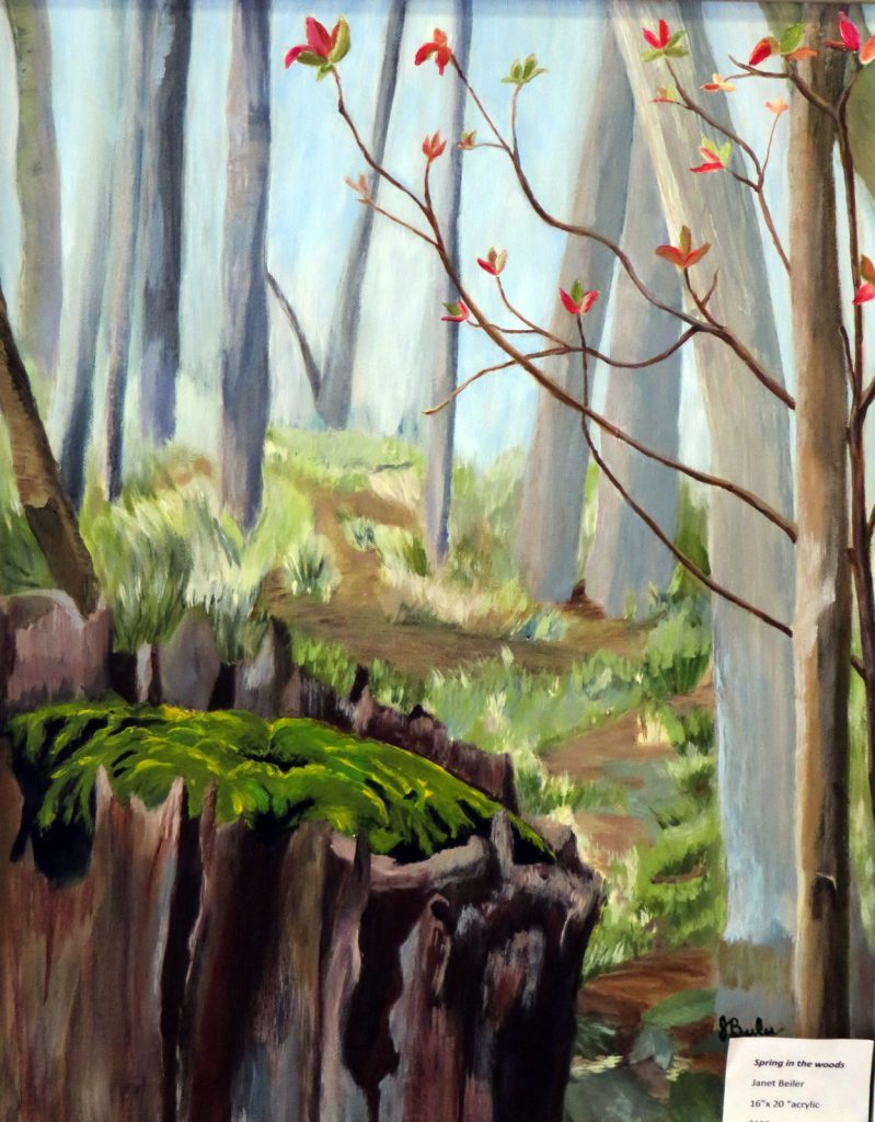Beiler Janet Spring in the Woods 16 x 20 Acrylic