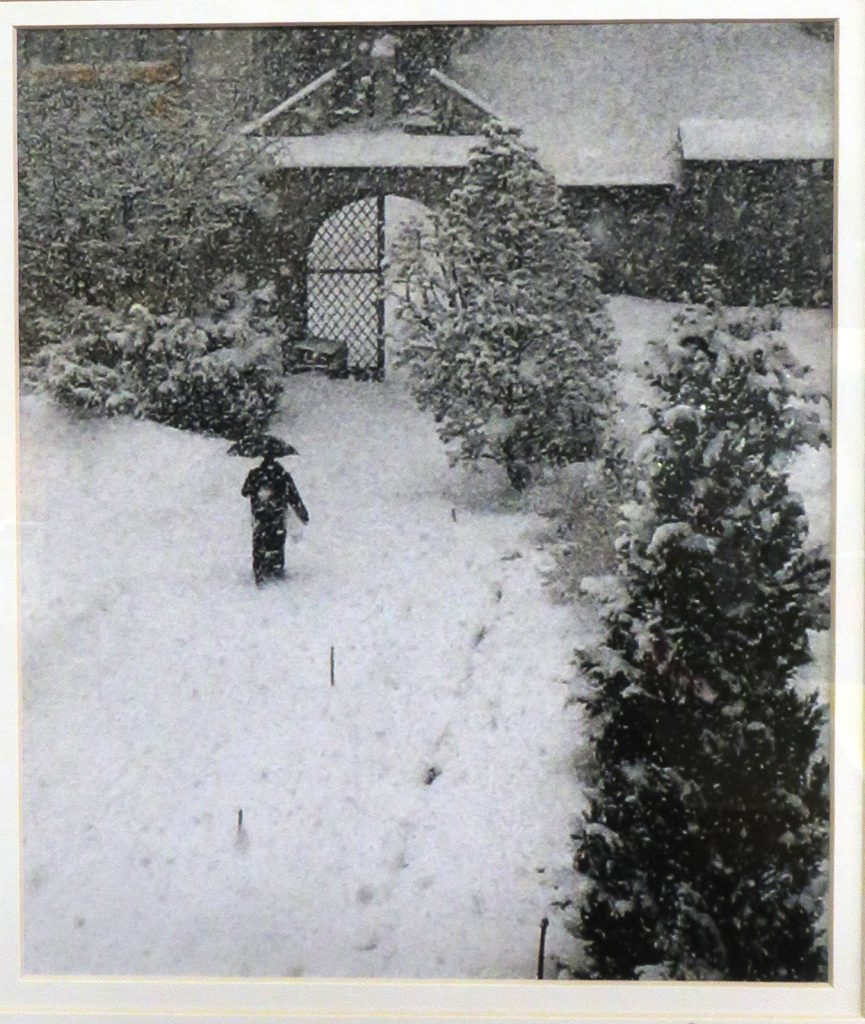 Prestley Rick Photograph Switzerland